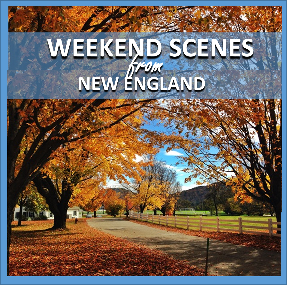 weekend scenes: from new england