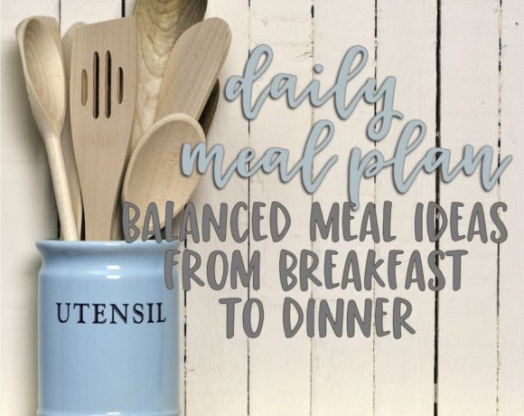 daily meal plan: number seventeen