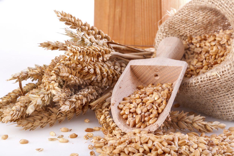balanced on a budget: my favorite budget-friendly grain picks // cait's plate