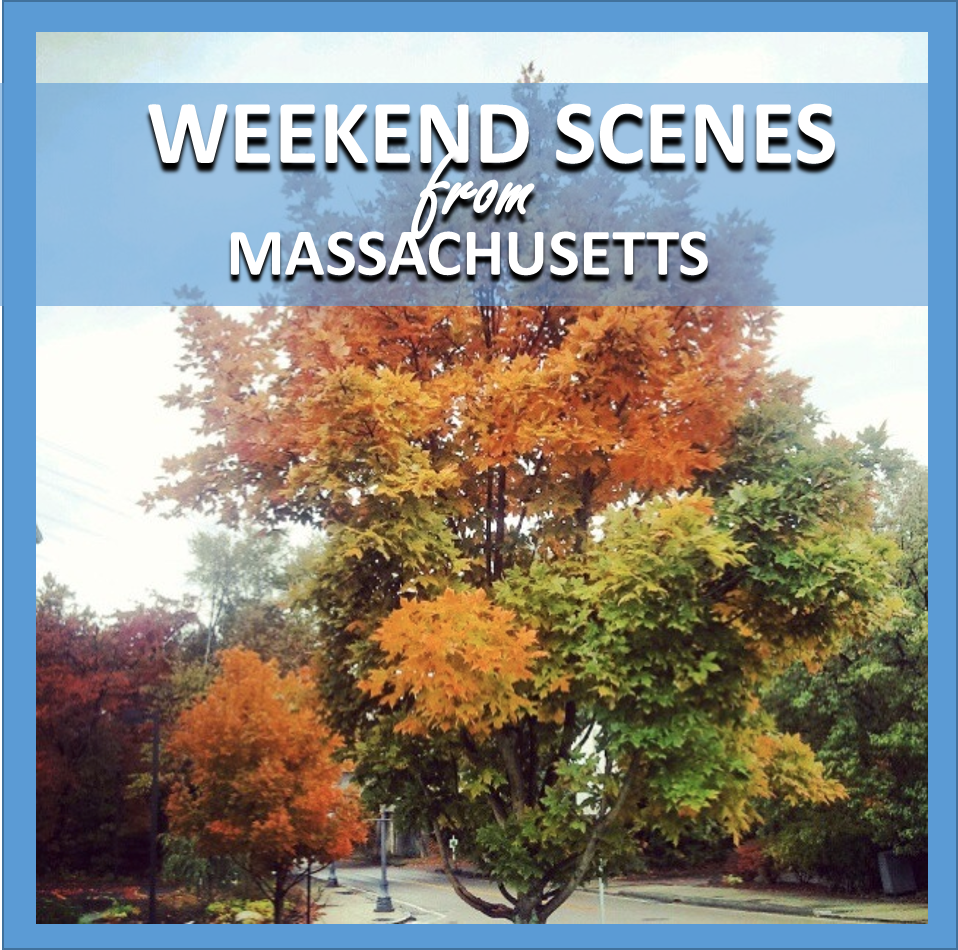 weekend scenes: from massachusetts // cait's plate