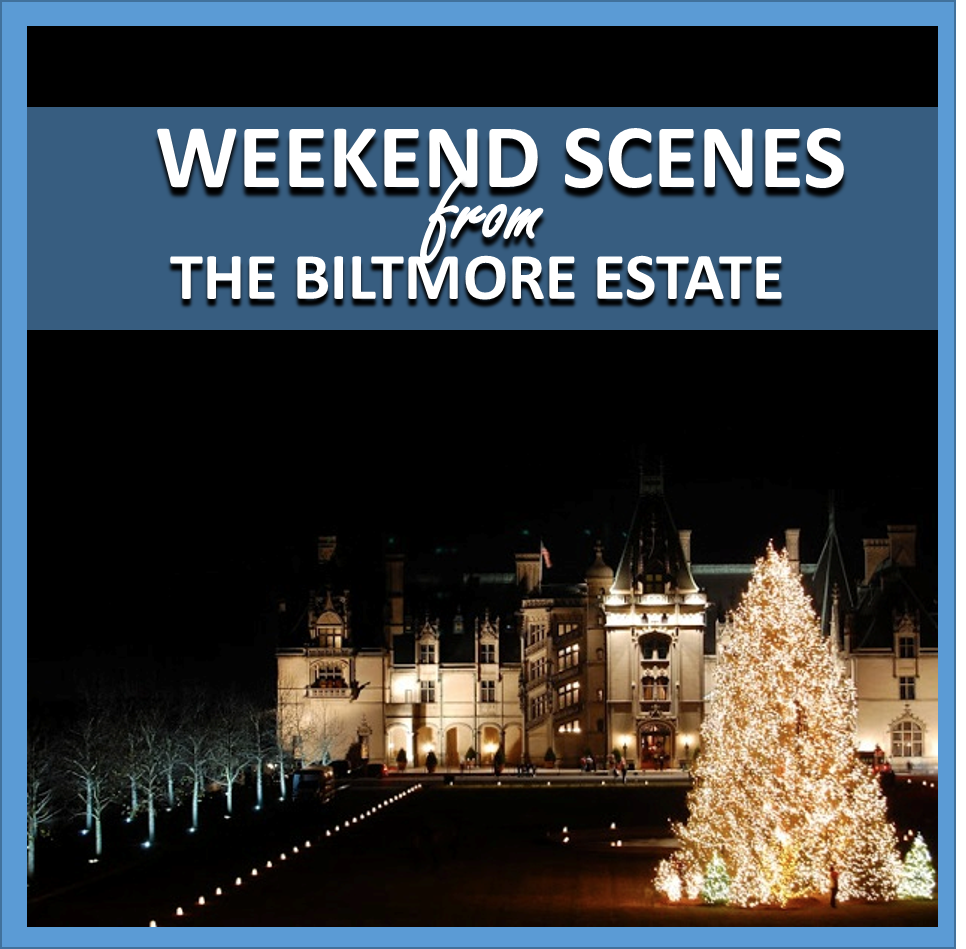weekend scenes: from the biltmore estate // cait's plate