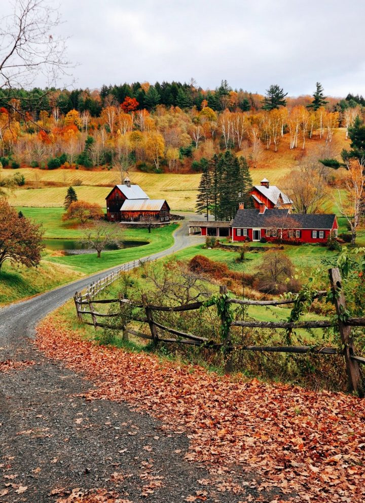 25 fun fall things to do in New England // cait's plate