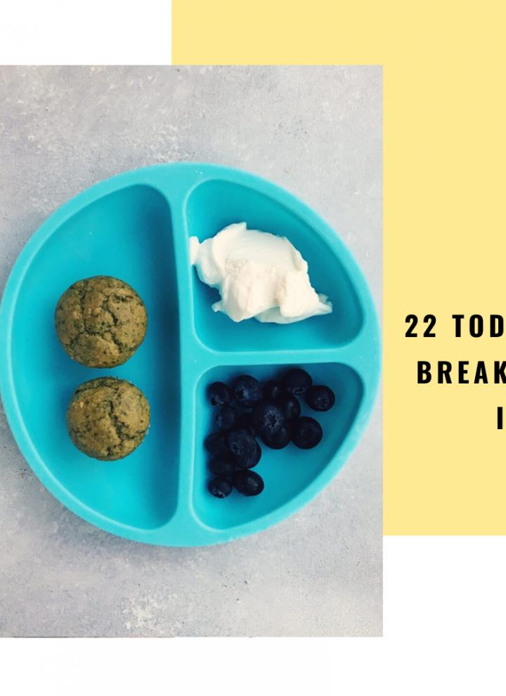 22 Toddler Breakfast Ideas // Cait's Plate
