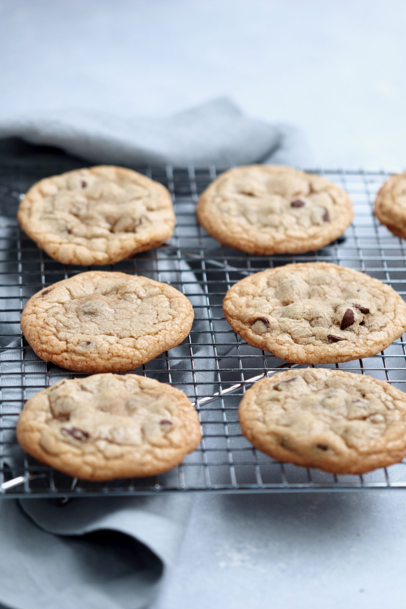 cook's illustrated ultimate chocolate chip cookies (aka -my favorite chocolate chip cookie!) // cait's plate